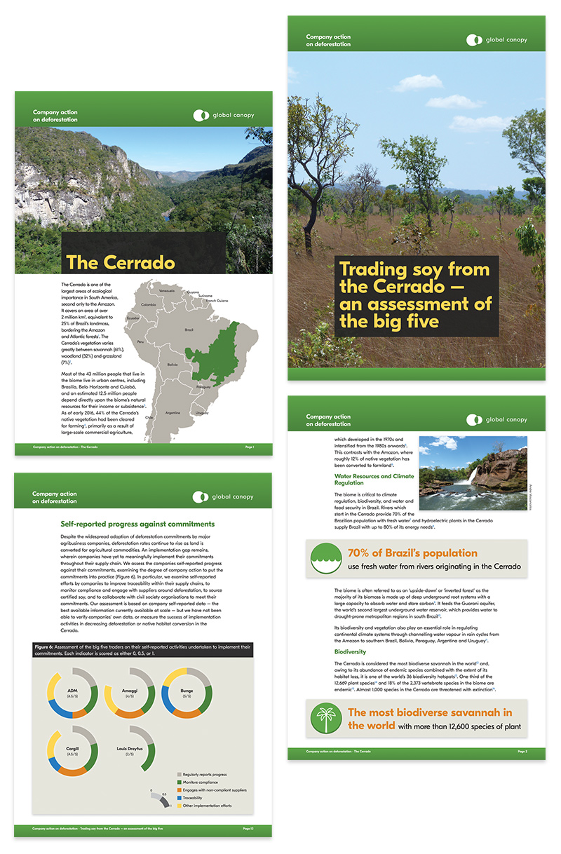 Global Canopy reports and briefing documents