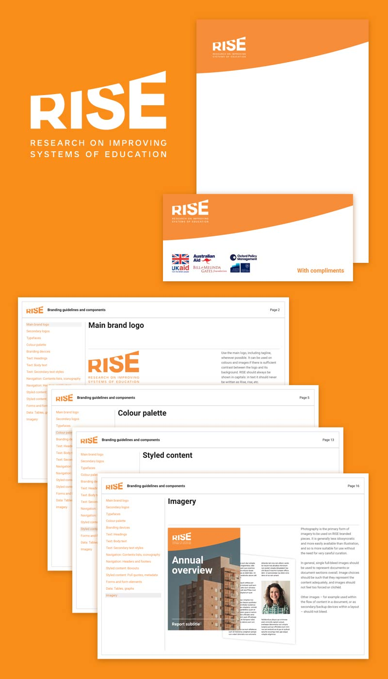 RISE programme brand system / guidelines